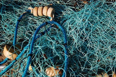 El secreto de las cuerdas